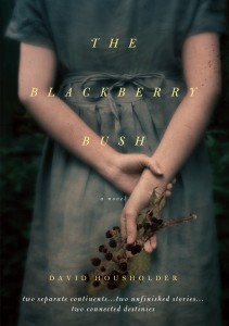 The Blackberry Bush a novel by David Housholder