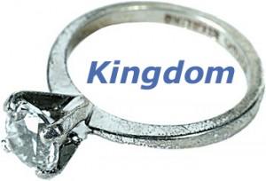 weddiningring_kingdom_13